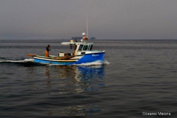 iah-lobster-boat