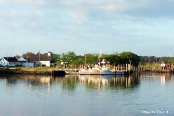 oyster-village_0