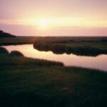 Sunlight Marsh