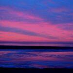 """Seeking solace amongst swirling viscous waves..."""