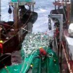 """Cod Fishing off Newfounland,"" Rás Fiskimyndir, 2004."