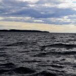 1102. Maine Island Family