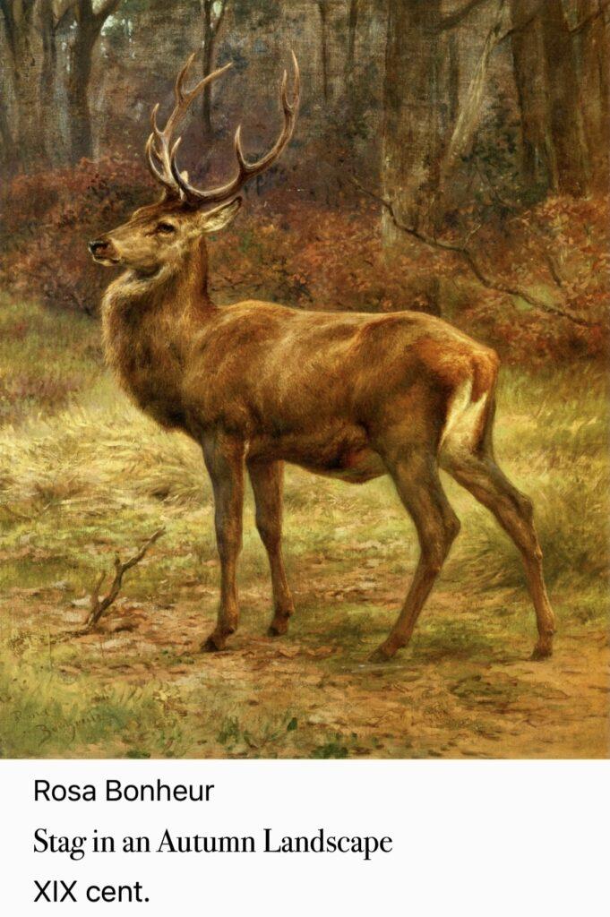 1324. Anya, Forest Wildling, Part 3